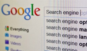 SEO: Get Your SEO Facts First